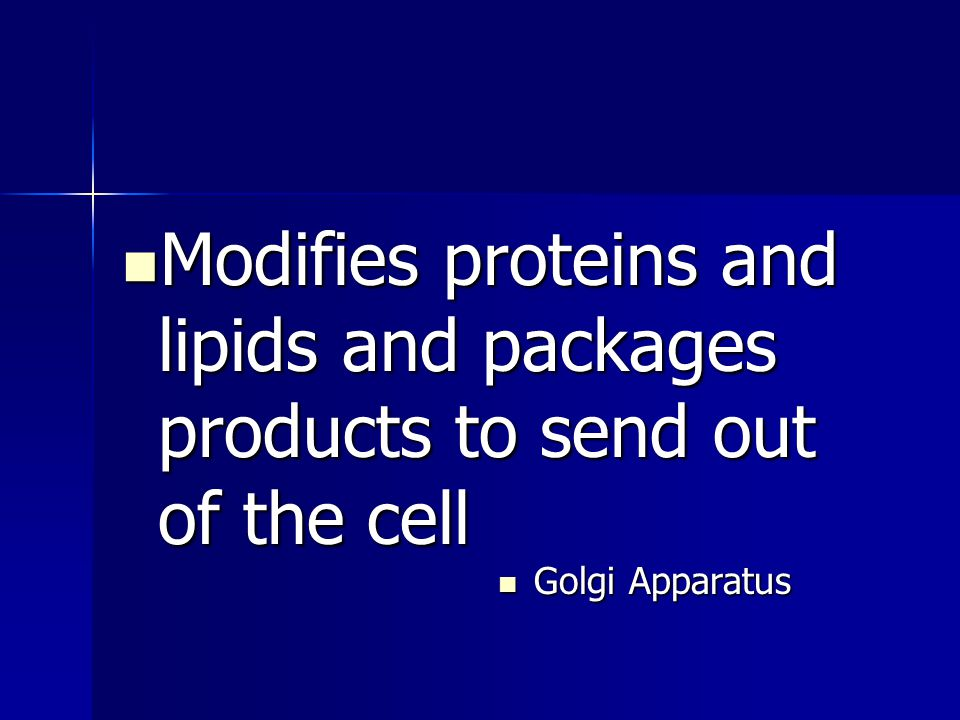 Modifies proteins and lipids and packages products to send out of the cell