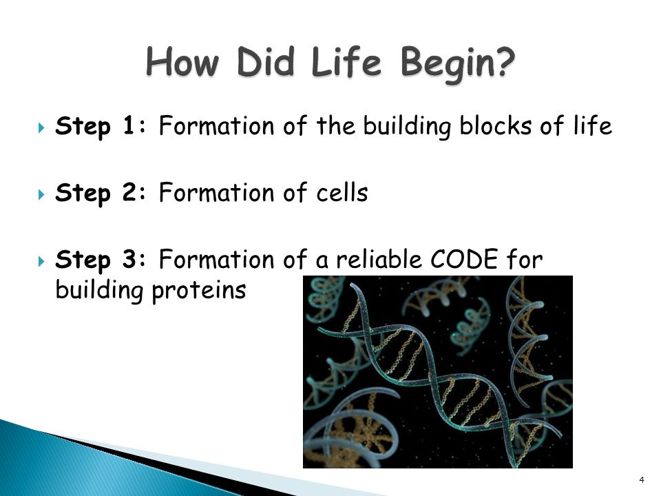 How Did Life Begin Step 1: Formation of the building blocks of life