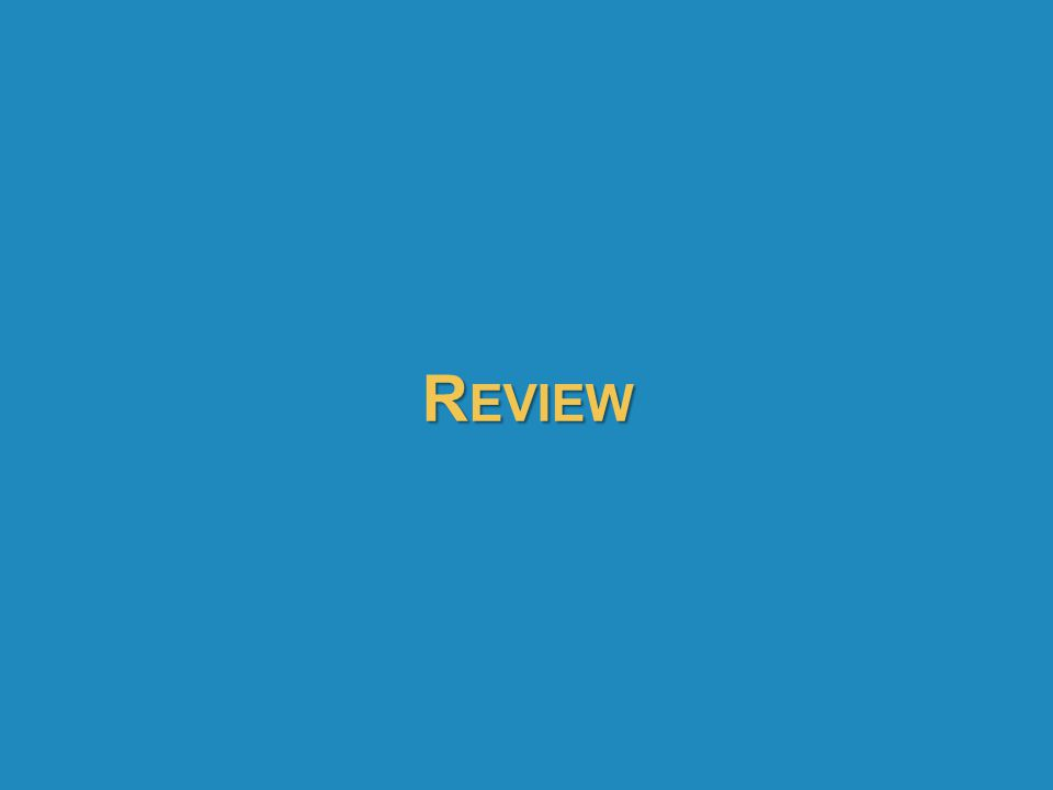 Review 81