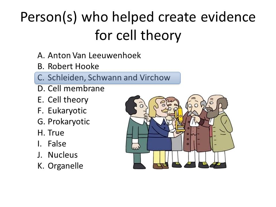 Person(s) who helped create evidence for cell theory
