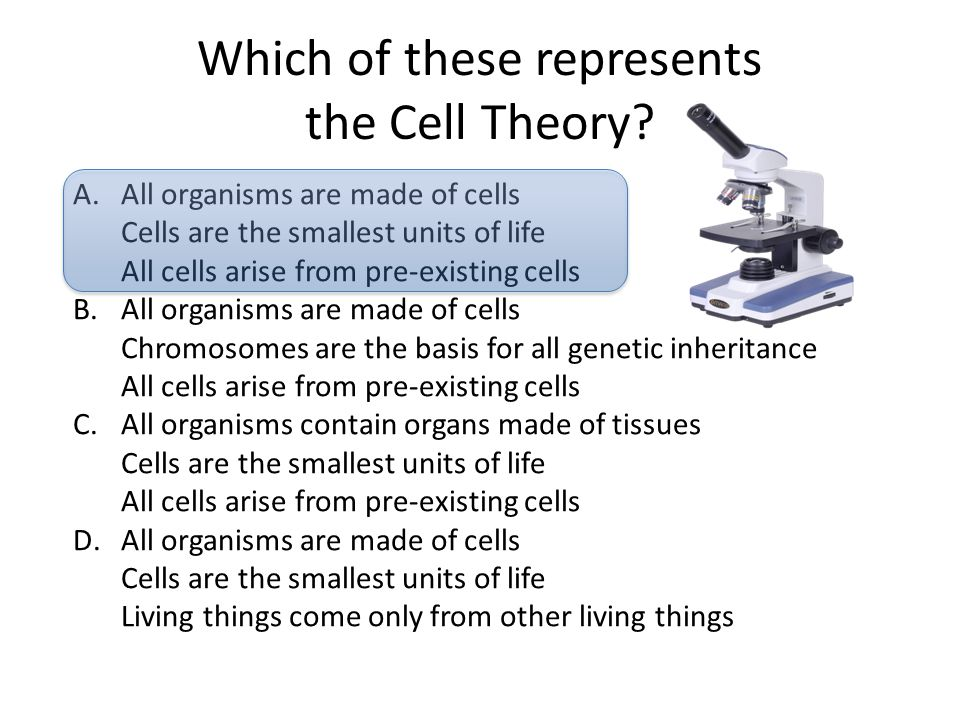 Which of these represents the Cell Theory