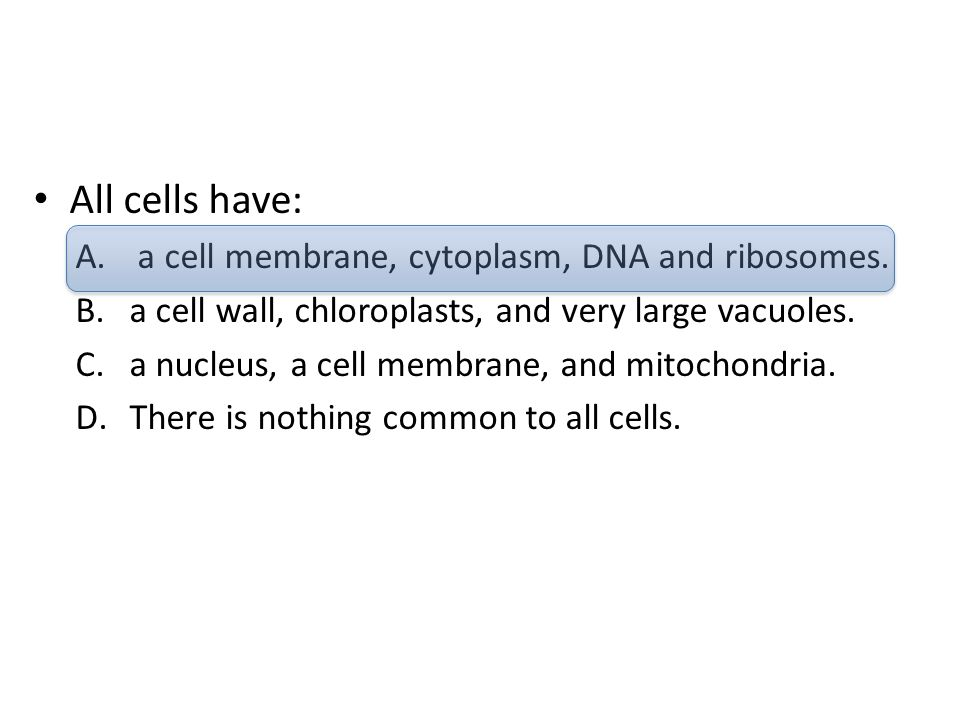 All cells have: a cell membrane, cytoplasm, DNA and ribosomes.