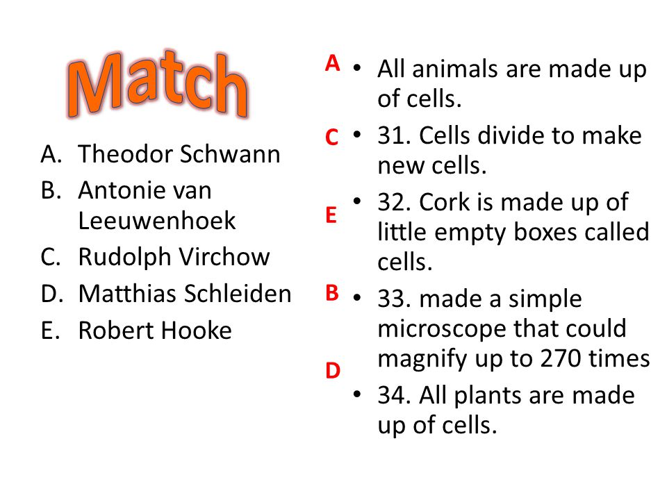 Match All animals are made up of cells.