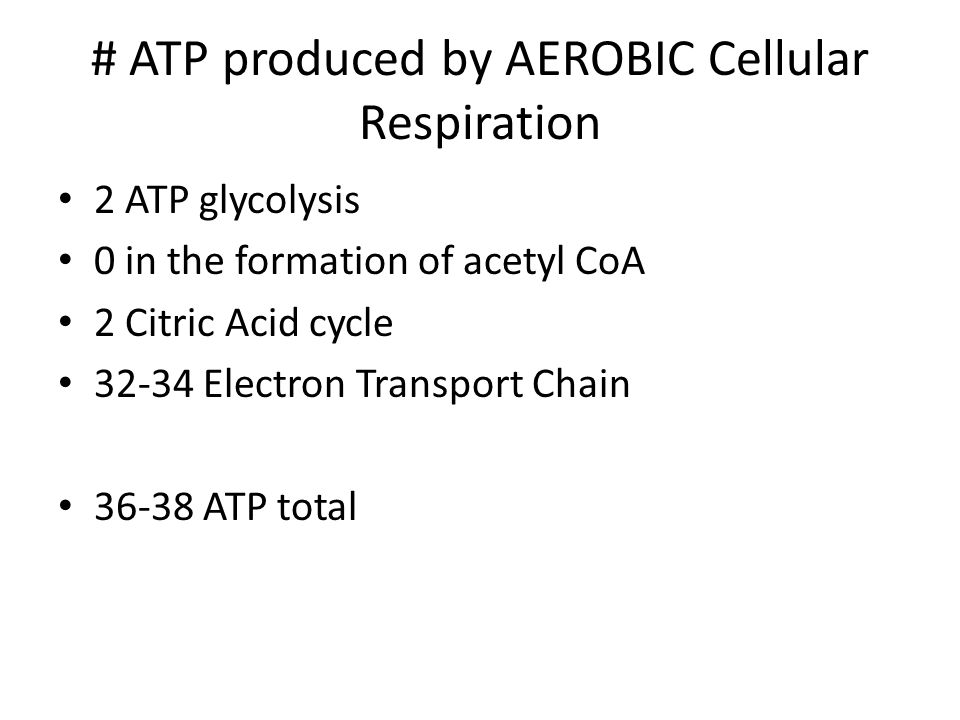 # ATP produced by AEROBIC Cellular Respiration