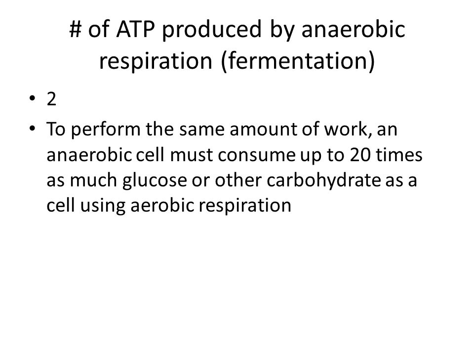 # of ATP produced by anaerobic respiration (fermentation)