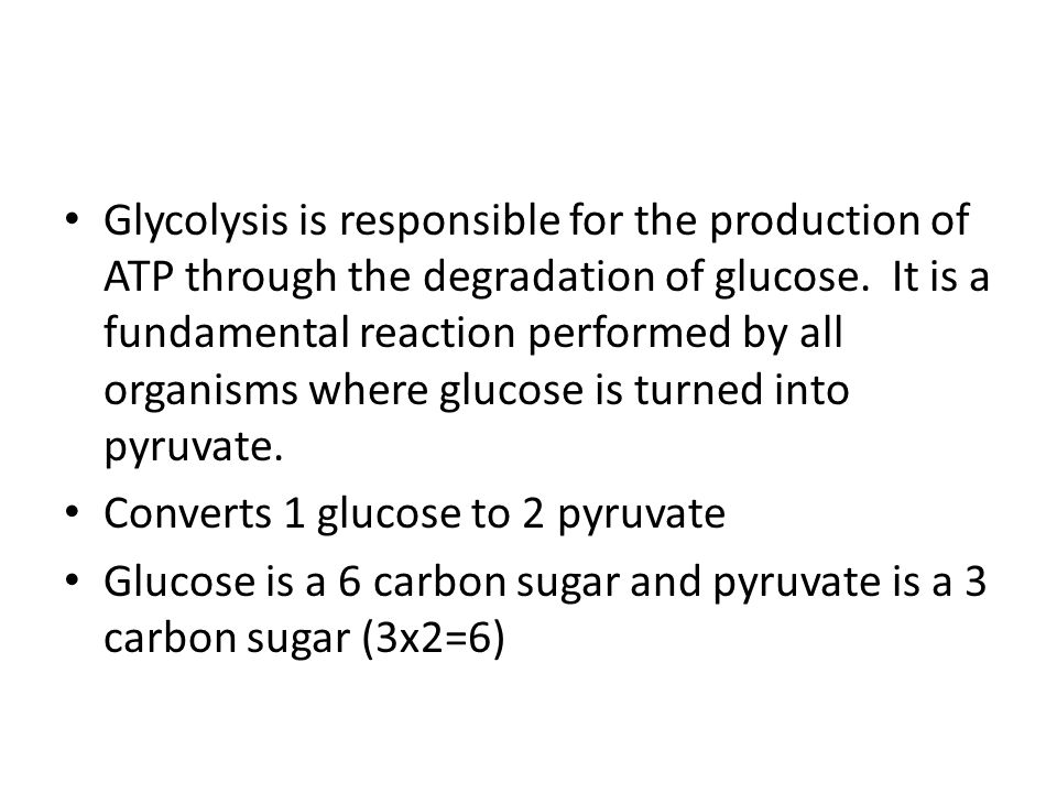 Glycolysis is responsible for the production of ATP through the degradation of glucose. It is a fundamental reaction performed by all organisms where glucose is turned into pyruvate.