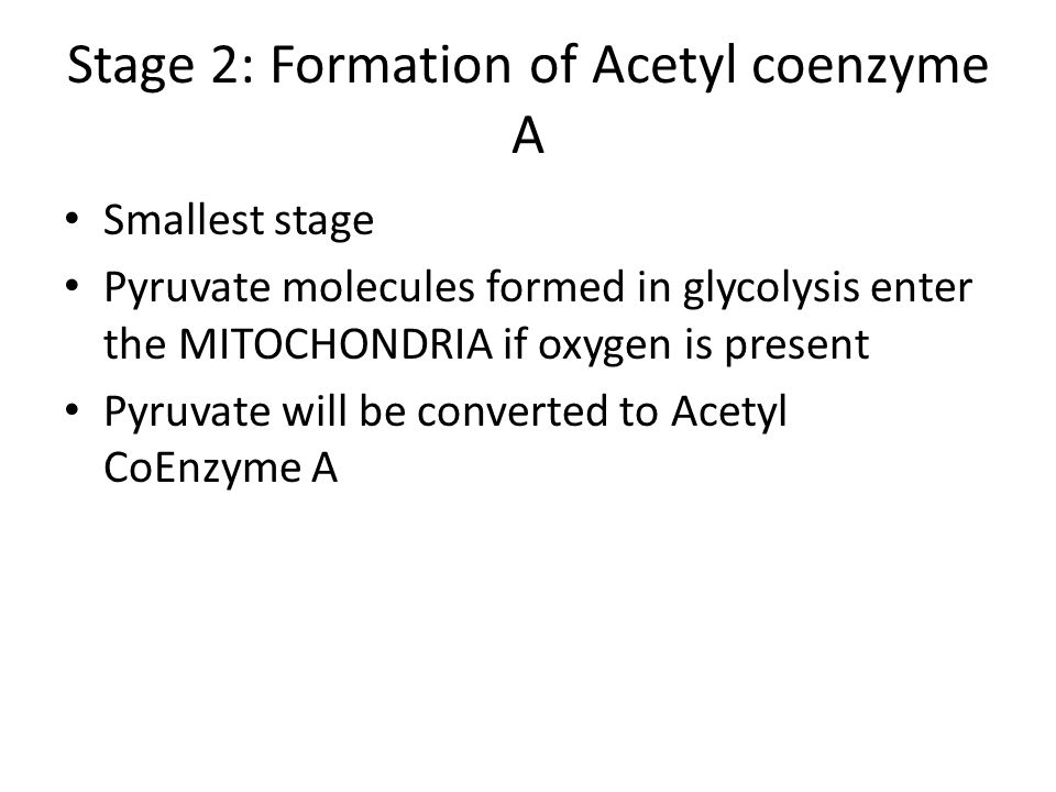 Stage 2: Formation of Acetyl coenzyme A