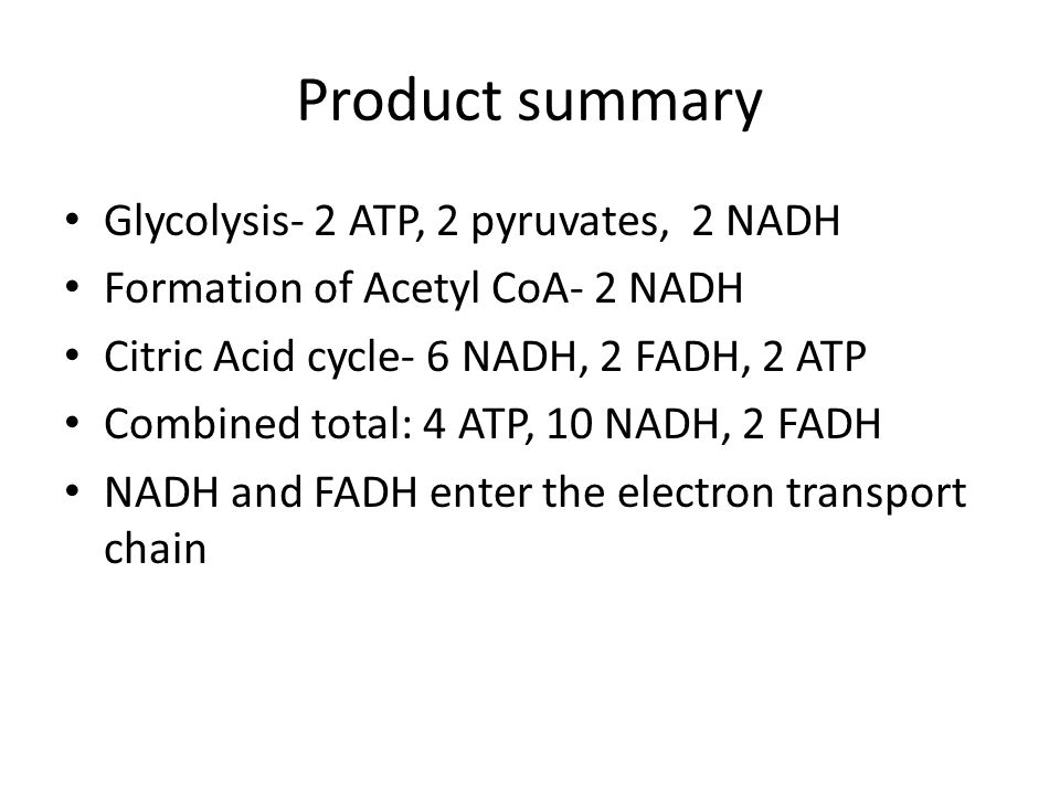 Product summary Glycolysis- 2 ATP, 2 pyruvates, 2 NADH