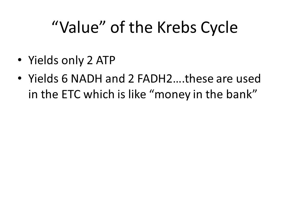 Value of the Krebs Cycle