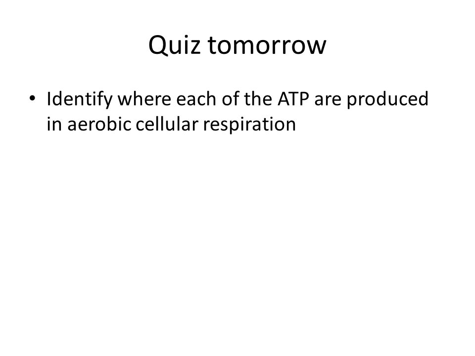 Quiz tomorrow Identify where each of the ATP are produced in aerobic cellular respiration