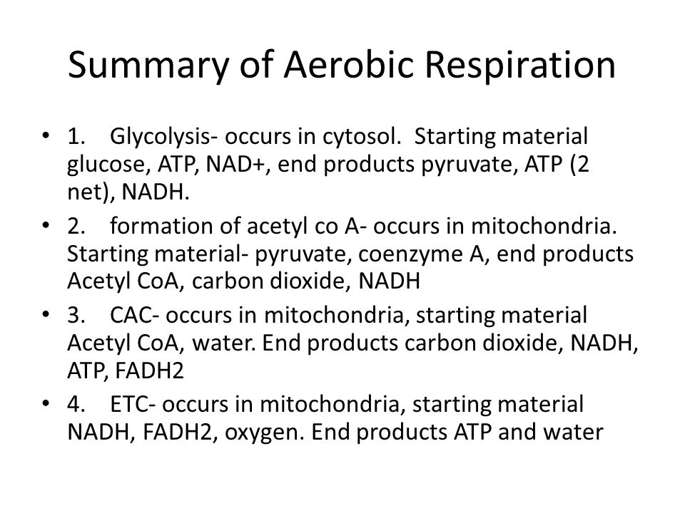Summary of Aerobic Respiration
