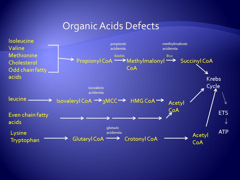Organic Acids Defects Isoleucine Valine Methionine Cholesterol