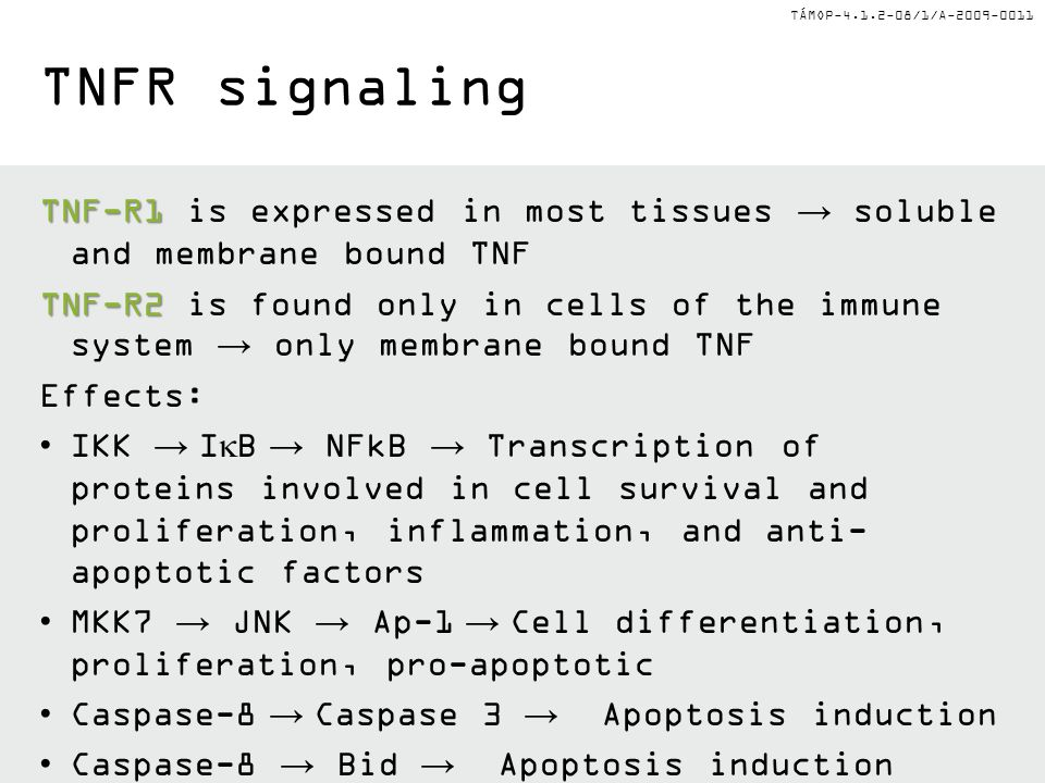 TNFR signaling TNF-R1 is expressed in most tissues → soluble and membrane bound TNF.