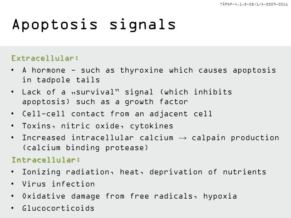 Apoptosis signals Extracellular: