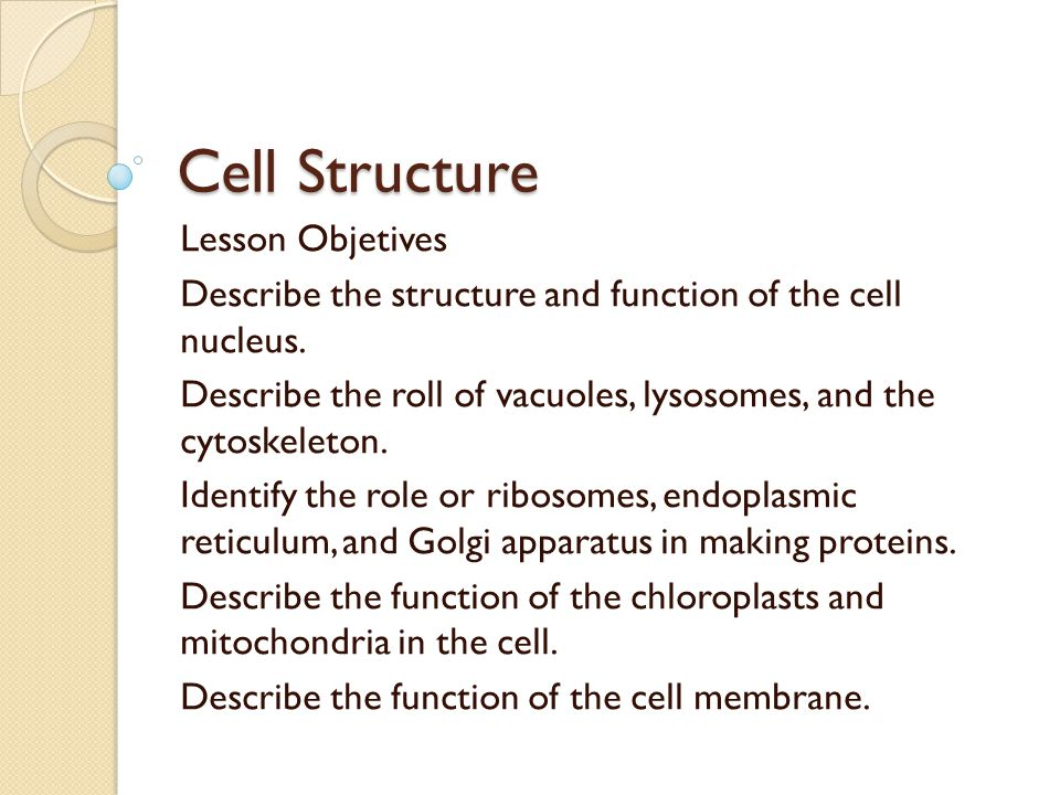 Cell Structure Lesson Objetives