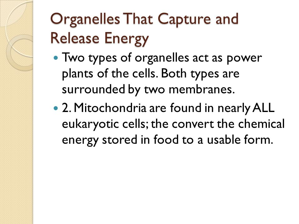 Organelles That Capture and Release Energy