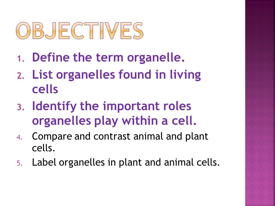 Objectives Define the term organelle.
