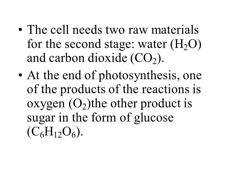 The cell needs two raw materials for the second stage: water (H2O) and carbon dioxide (CO2).