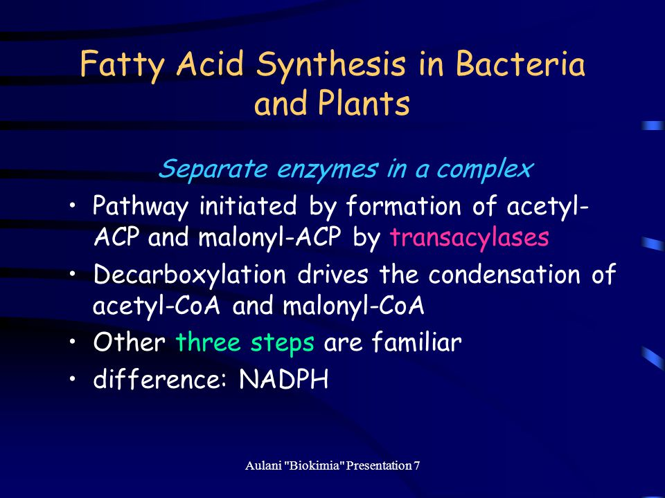 Fatty Acid Synthesis in Bacteria and Plants