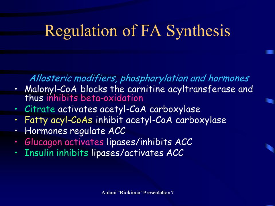 Regulation of FA Synthesis