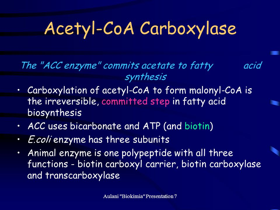 Acetyl-CoA Carboxylase