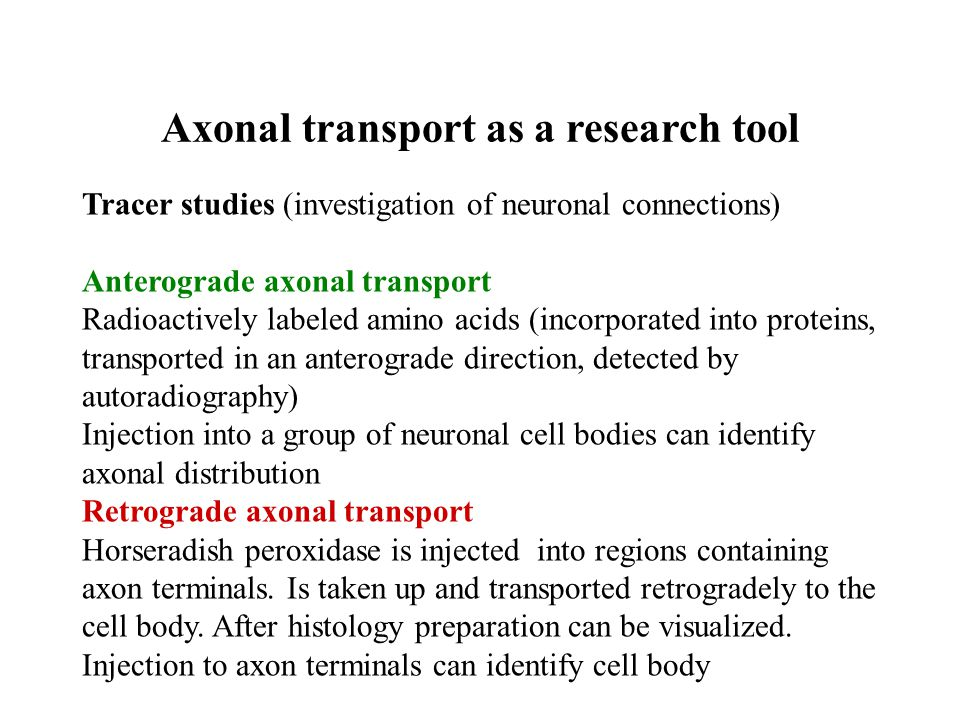 Axonal transport as a research tool