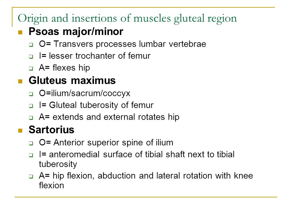 Origin and insertions of muscles gluteal region