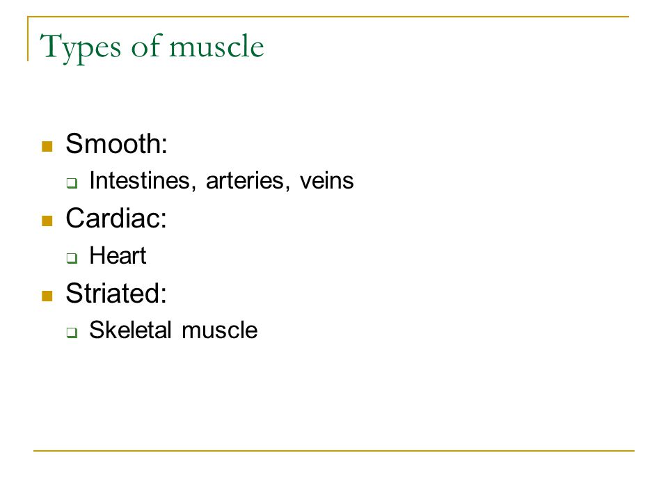 Types of muscle Smooth: Cardiac: Striated: Intestines, arteries, veins