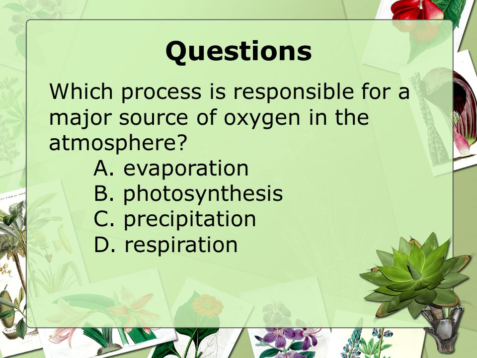 Questions Which process is responsible for a major source of oxygen in the atmosphere A. evaporation.