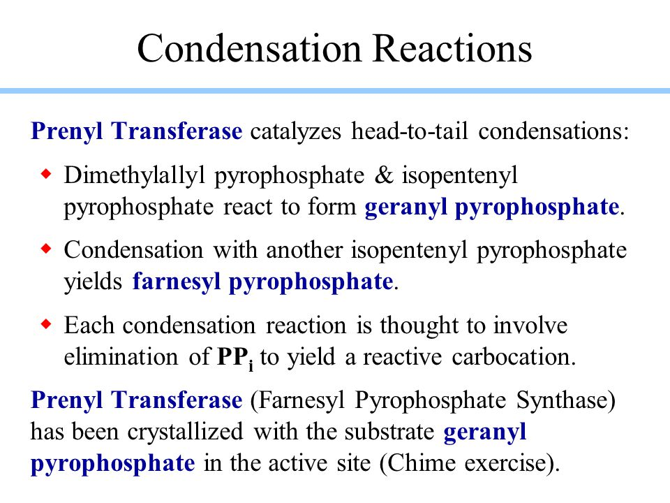 Condensation Reactions