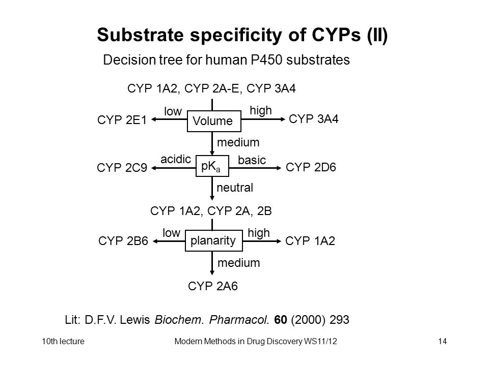 Substrate specificity of CYPs (II)