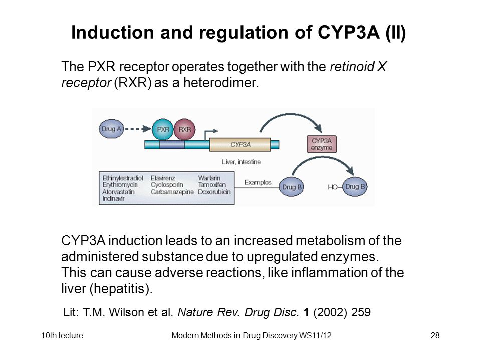 Induction and regulation of CYP3A (II)