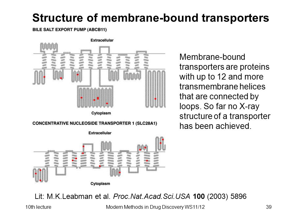 Structure of membrane-bound transporters