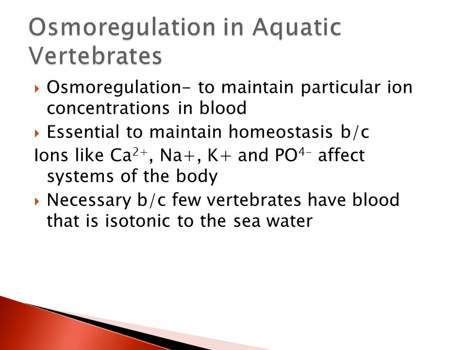 Osmoregulation in Aquatic Vertebrates
