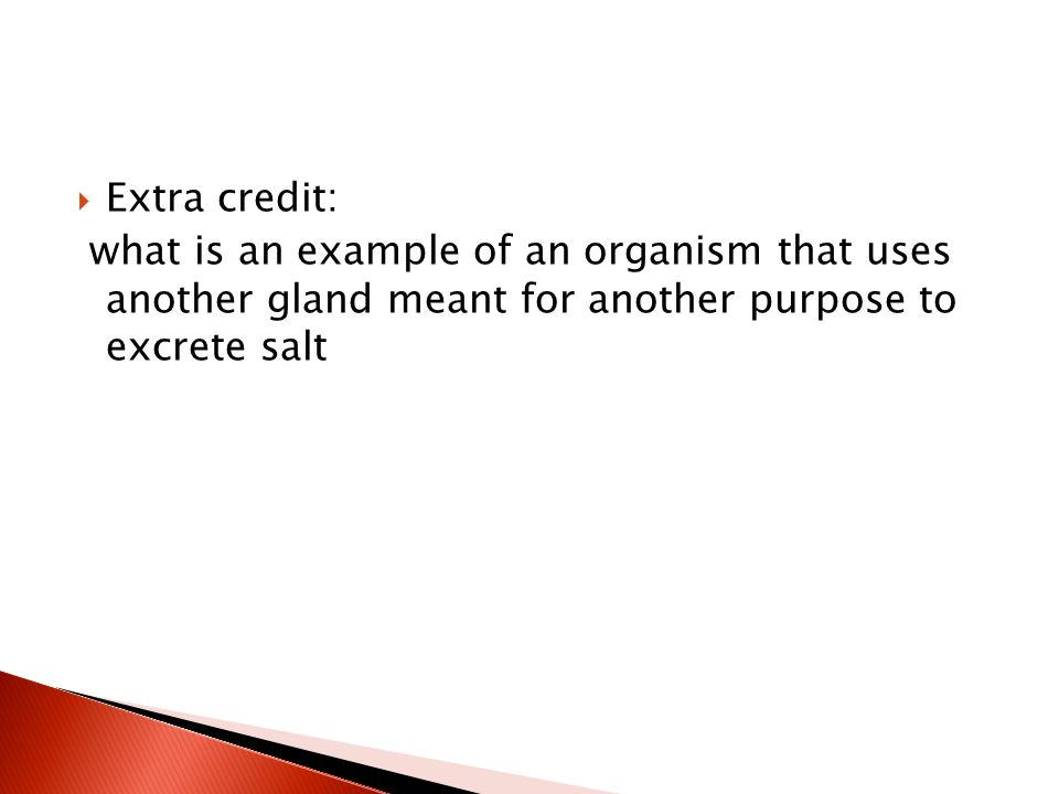 Extra credit: what is an example of an organism that uses another gland meant for another purpose to excrete salt.