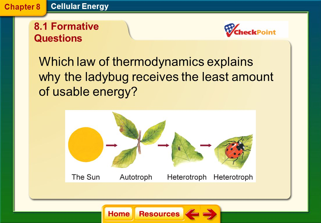 Which law of thermodynamics explains