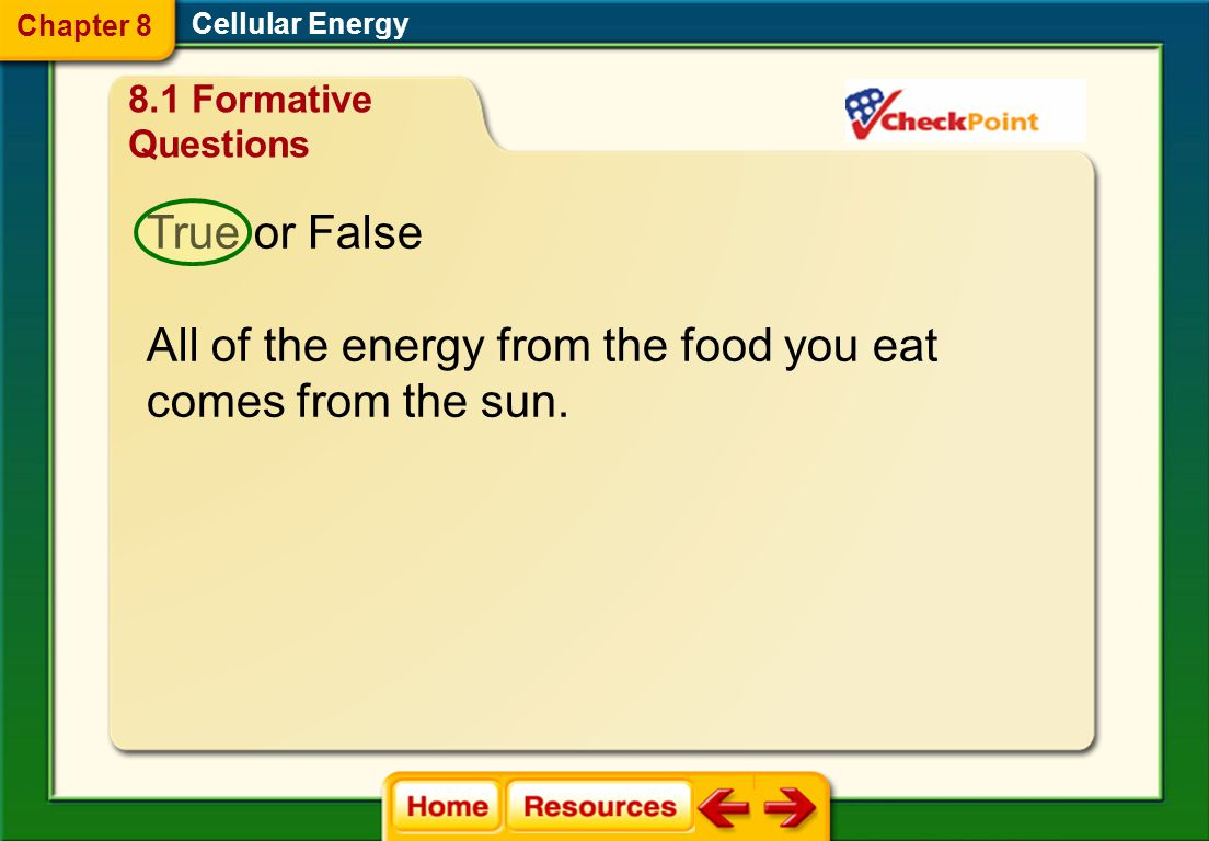 All of the energy from the food you eat comes from the sun.