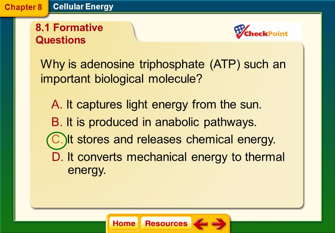Why is adenosine triphosphate (ATP) such an