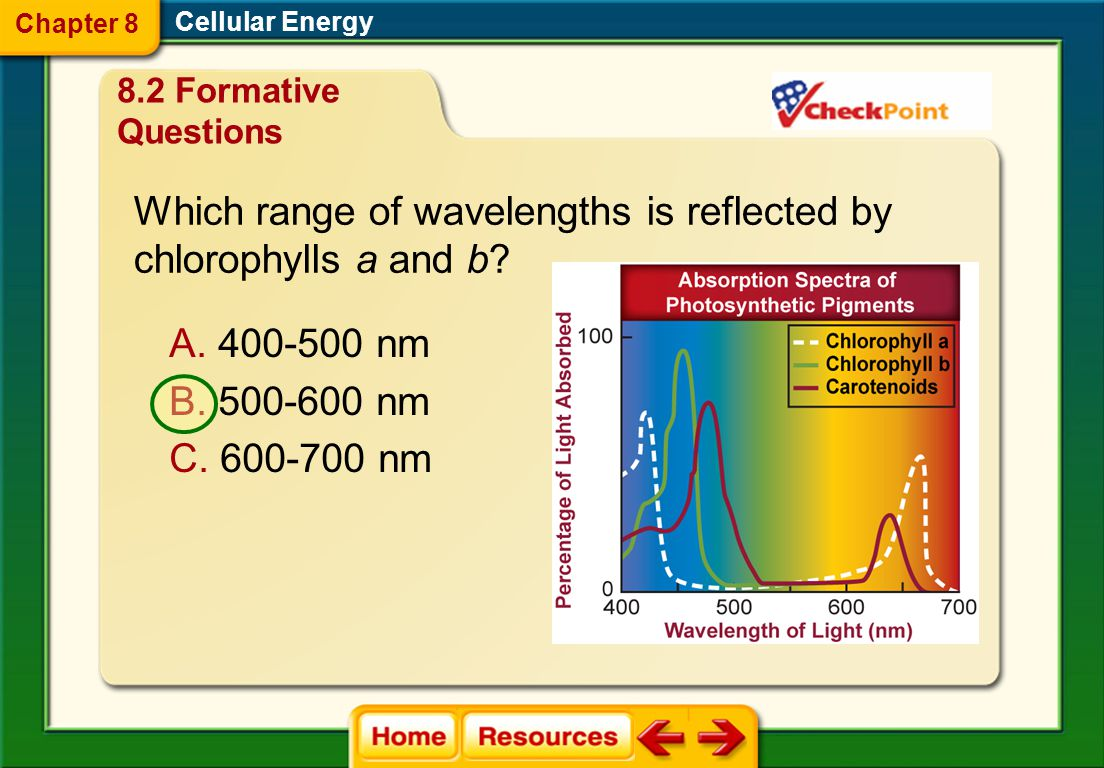 Which range of wavelengths is reflected by chlorophylls a and b