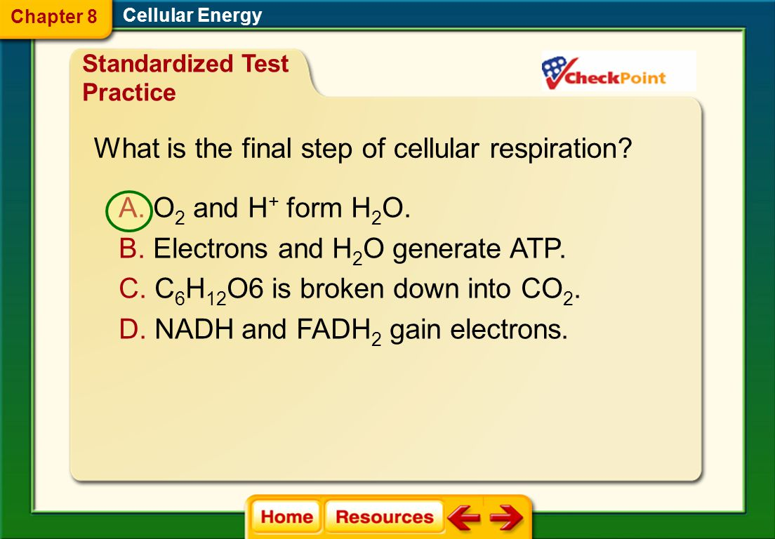 What is the final step of cellular respiration