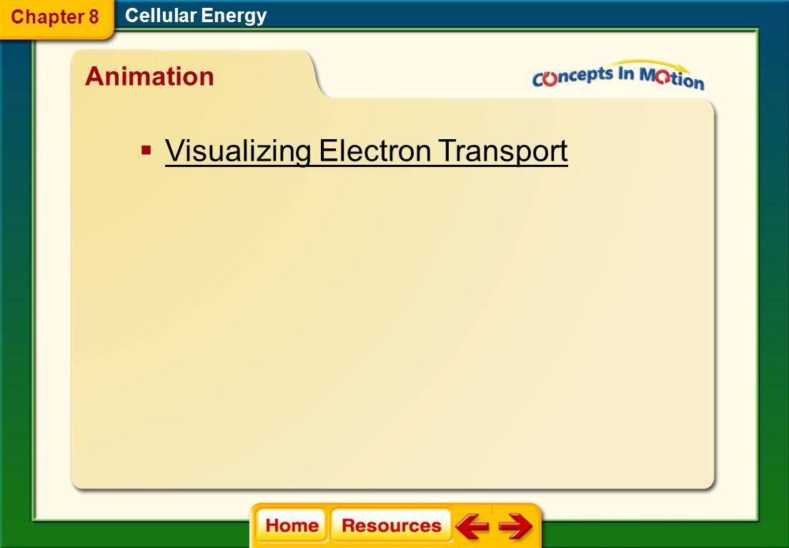 Visualizing Electron Transport