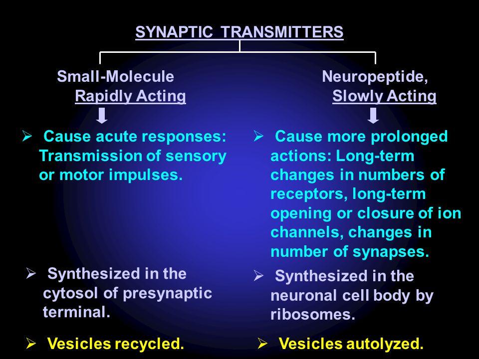 SYNAPTIC TRANSMITTERS Neuropeptide, Slowly Acting