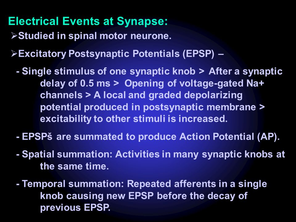 Electrical Events at Synapse: