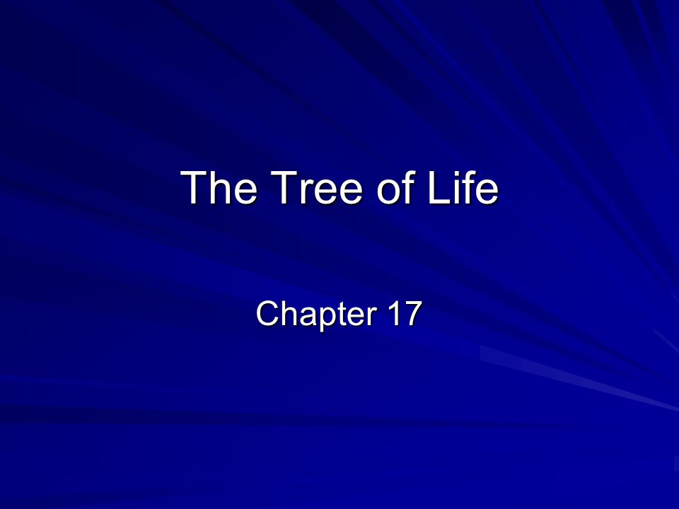 The Tree of Life Chapter 17