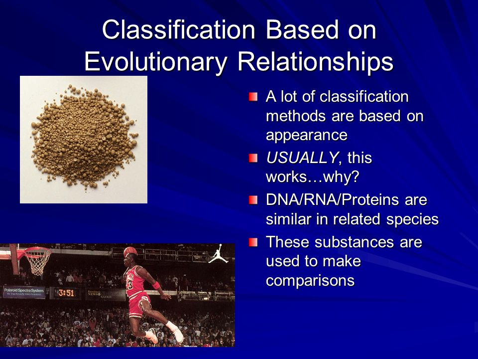 Classification Based on Evolutionary Relationships