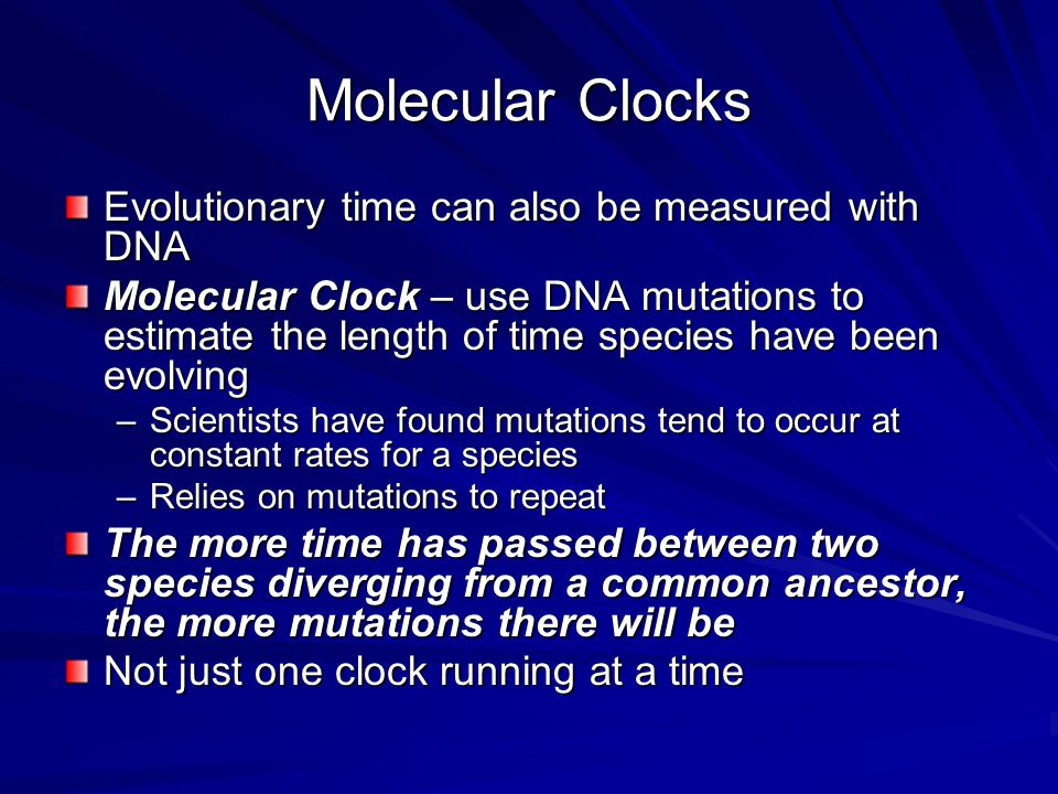 Molecular Clocks Evolutionary time can also be measured with DNA