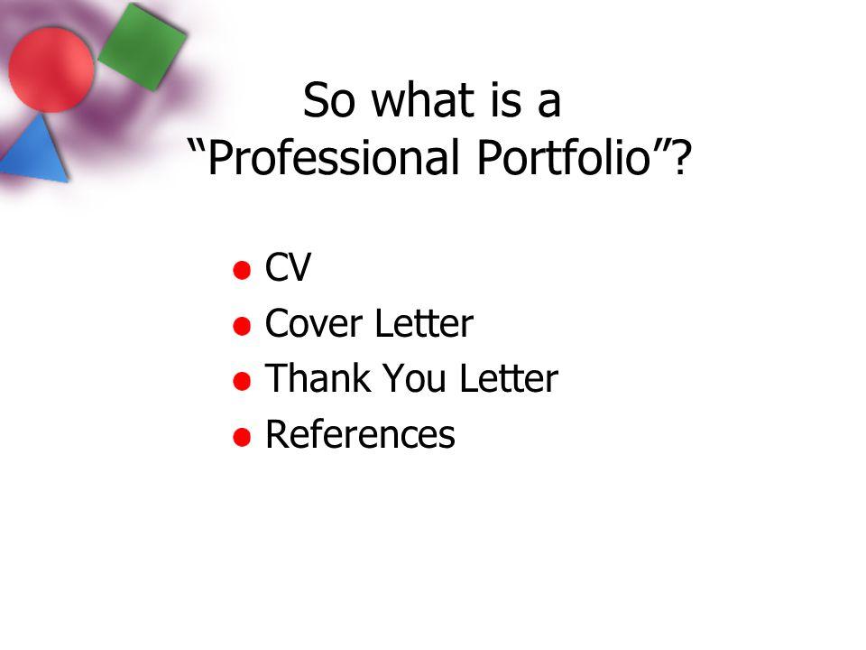 So what is a Professional Portfolio