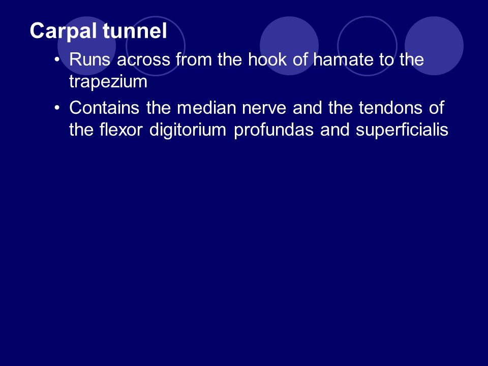 Carpal tunnel Runs across from the hook of hamate to the trapezium