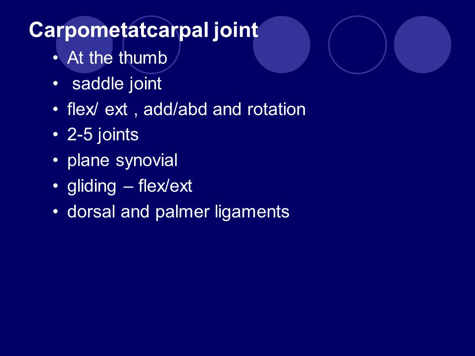 Carpometatcarpal joint