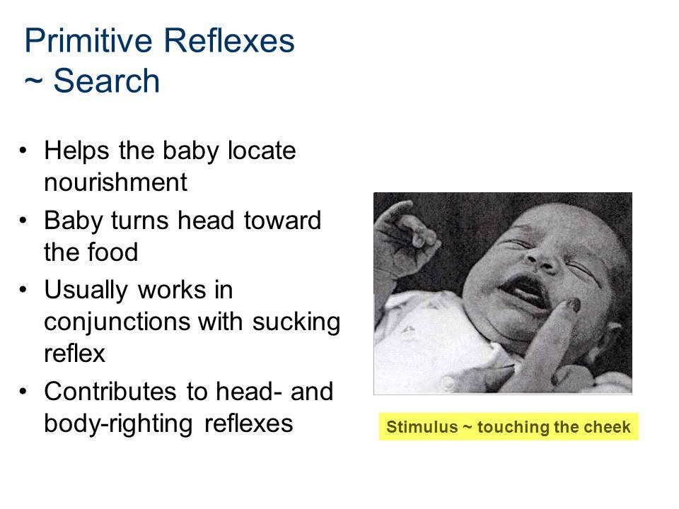Primitive Reflexes ~ Search